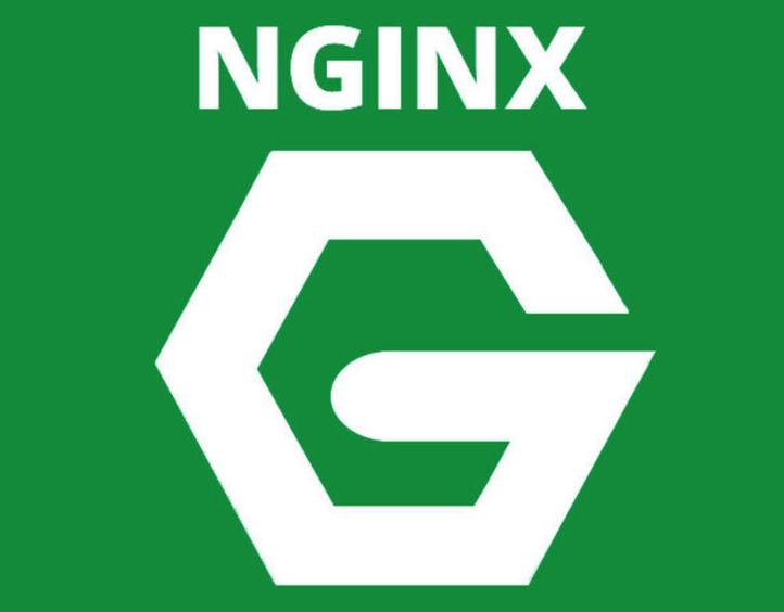 nginx两行代码返回客户端IP